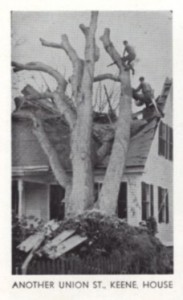 A tree fell on 44 Union Street in Keene NH during the Hurricane of '38