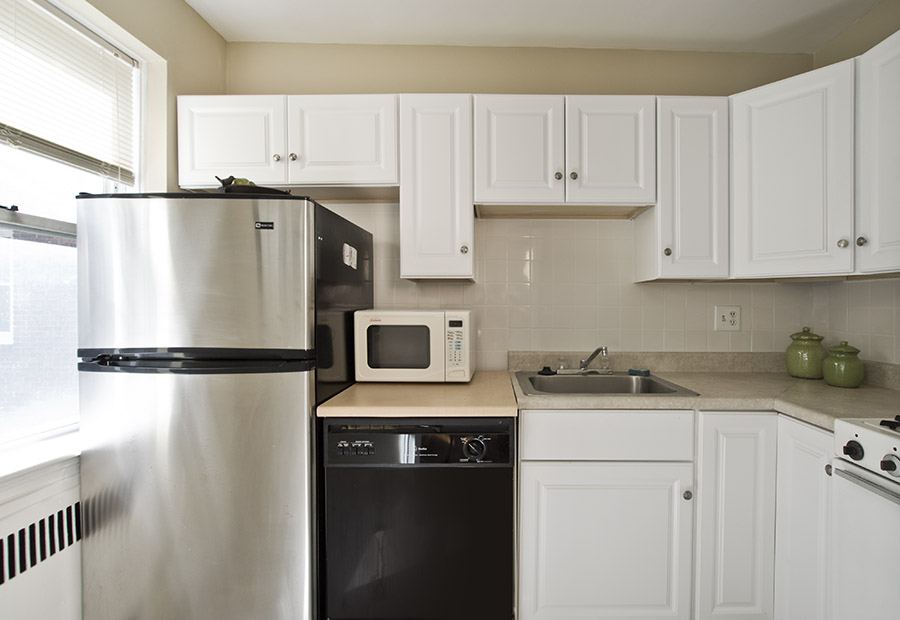 395 Broadway Unit L34 Kitchen