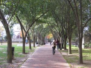 Bike to Boston on the Davis Square bike path